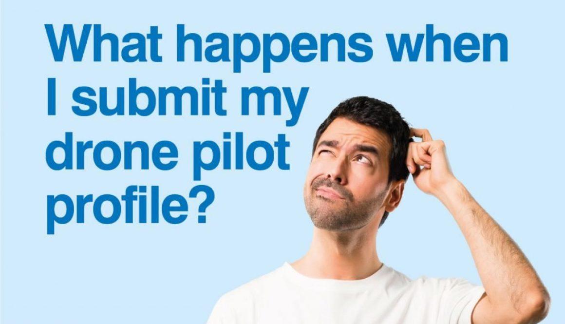 what-happens-pilot-profile-web